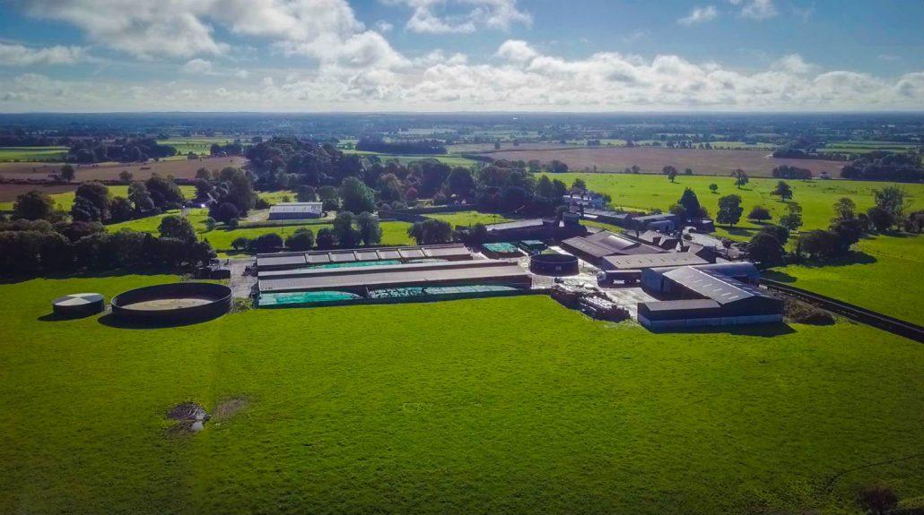 Irland-Farm