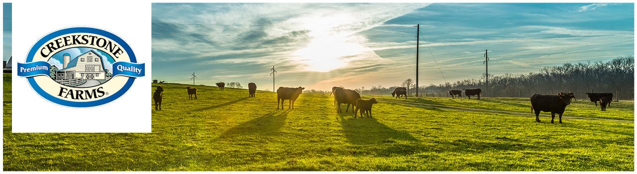 Creekstone Farms Fleisch online kaufen bei Don Carne.de » Nur allerbeste Qualität ✔ Sichere & schnelle Lieferung ✔ Kontrollierte und zertifizierte Herkunft ✔ Kostenloser Versand ab 99€ Bestellwert ✔