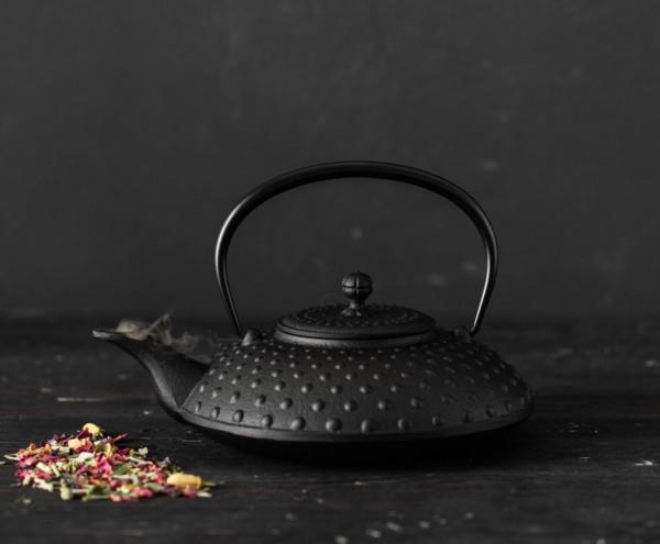 Dammann Japanische Teekanne Kanbin
