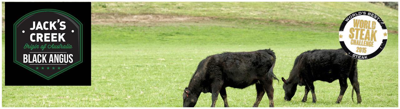 Jack's Creek Fleisch online kaufen bei Don Carne.de » Nur allerbeste Qualität ✔ Sichere & schnelle Lieferung ✔ Kontrollierte und zertifizierte Herkunft ✔ Kostenloser Versand ab 99€ Bestellwert ✔